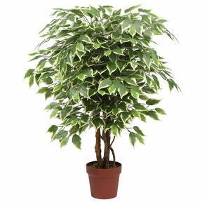 Kunstbaum Ficus 110 cm
