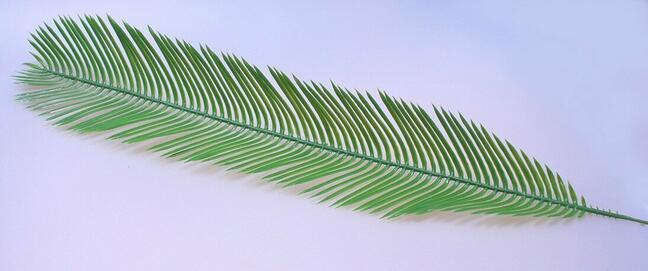 Künstliche Blattpalme Cycas 80 cm