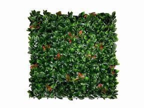 Künstliche Blattplatte Photinia - 50x50 cm