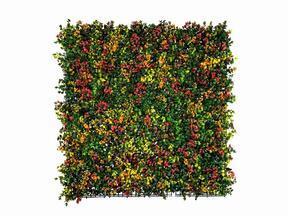 Künstliche Blumentafel Leucadendron - 50x50 cm50