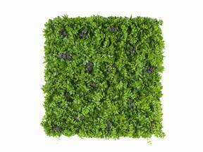 Künstliche Blumentafel Pennywort - 50x50 cm