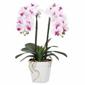 Künstliche Orchidee 43 cm