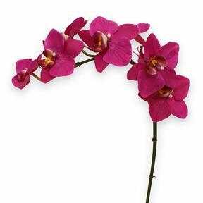 Künstliche Orchideenpflanze lila 80 cm