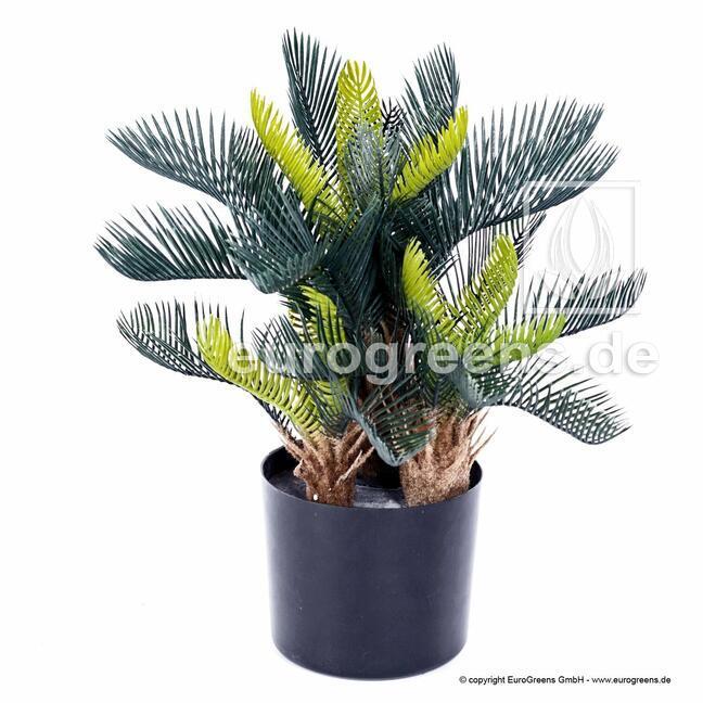 Künstliche Palme Cycas 50 cm