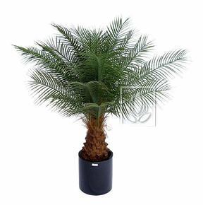 Künstliche Palme Datum 170 cm