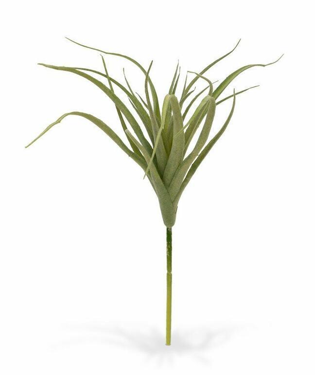 Künstliche Pflanze Tilandsia 20 cm