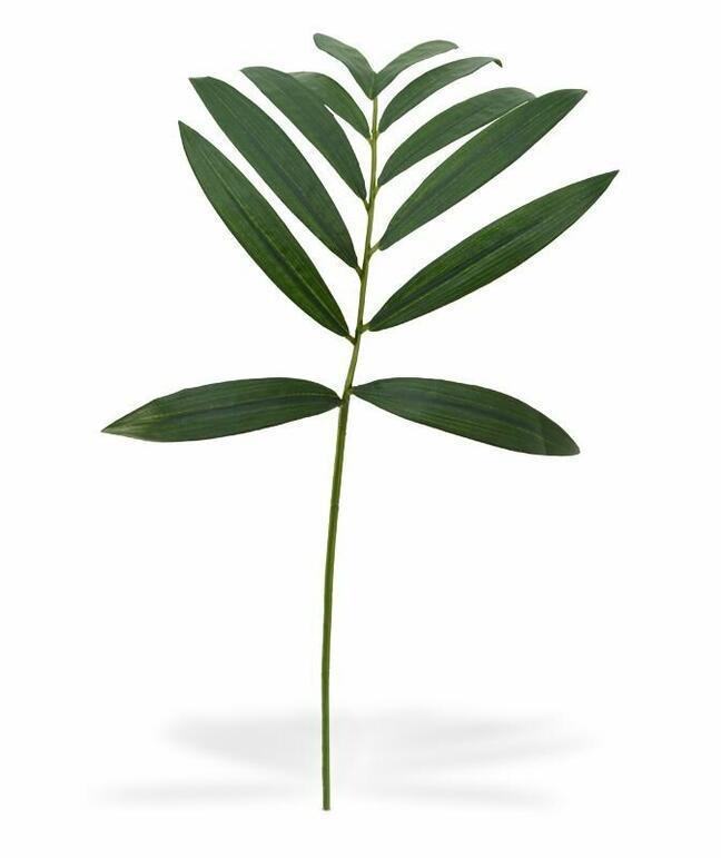 Künstlicher Ast Chamédorea ordentlich 60 cm