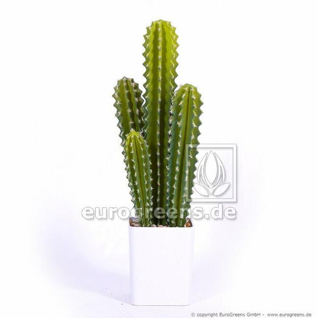 Künstlicher Kaktus San Pedro 55 cm