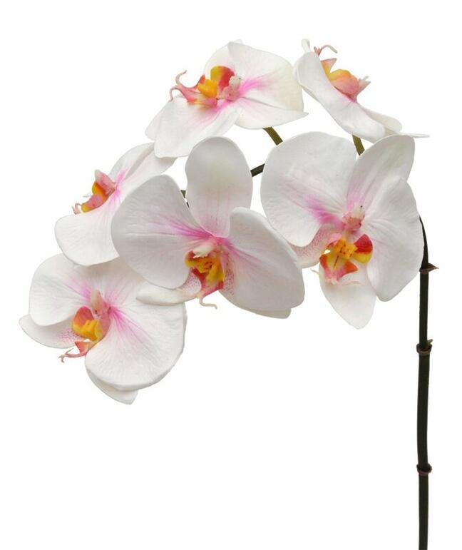 Künstlicher Orchideenzweig rosa-weiß 55 cm