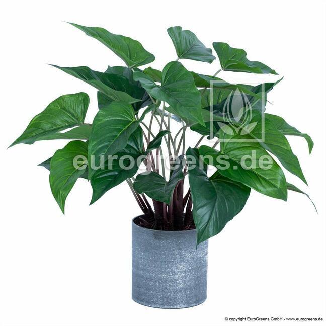 Kunstpflanze Anthurie 45 cm