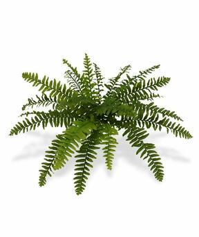 Kunstpflanze Boston Farn 40 cm