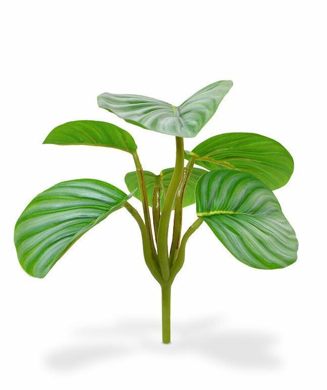 Kunstpflanze Calathea orbifolia 20 cmia
