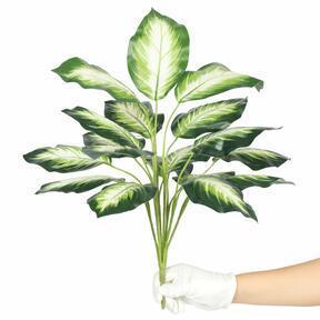 Kunstpflanze Dífenbachia weiß 50 cm