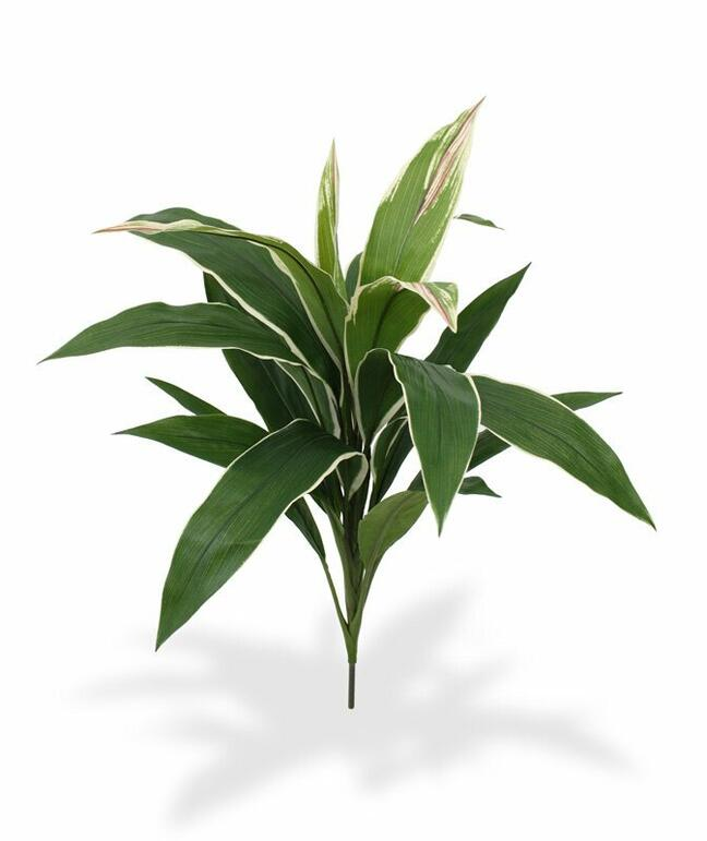 Kunstpflanze Dracena duftend 60 cm