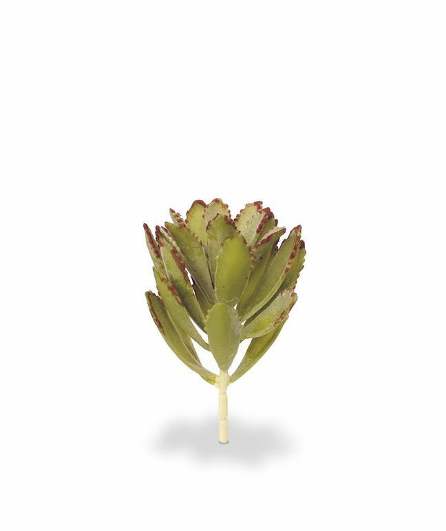 Kunstpflanze Eševéria 15 cm