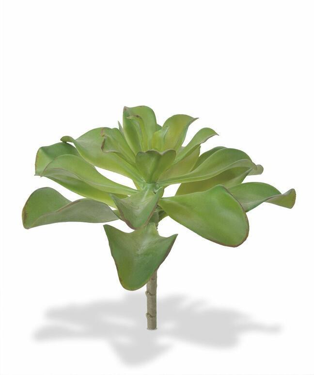 Kunstpflanze Eševéria 20 cm