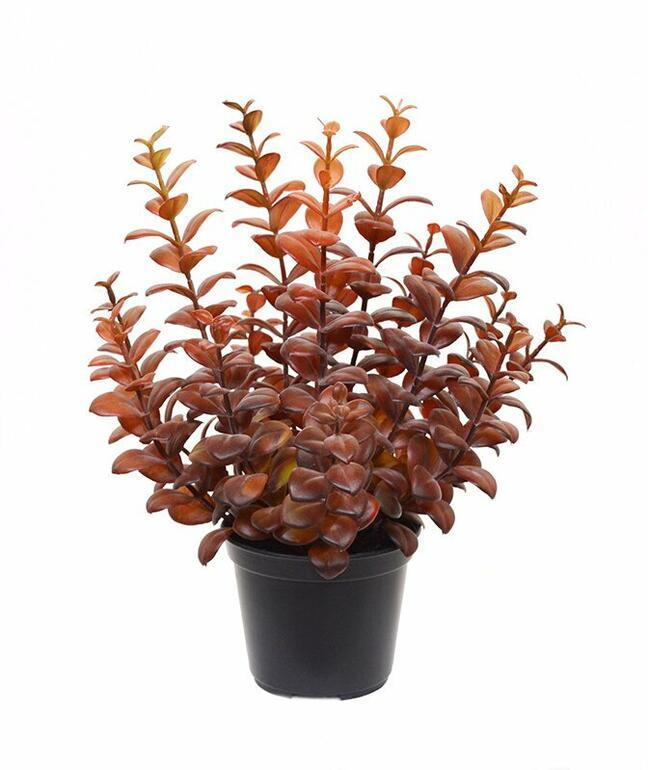 Kunstpflanze Eukalyptus burgunderrot 30 cm