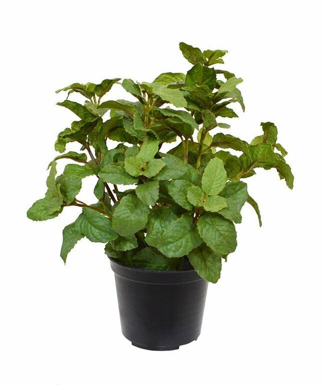 Kunstpflanze Minze 25 cm