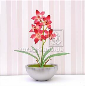 Kunstpflanze Orchidea Cymbidium burgunderrot 50 cm