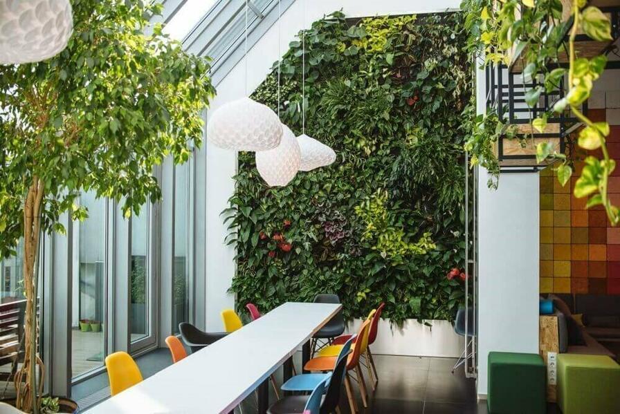 Zeleňou v interiéri rozhodne nešliapnete vedľa.