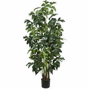 Palicha Kunstpflanze 160 cm