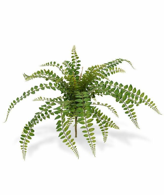 Rotundifolia Kunstpflanze 55 cm